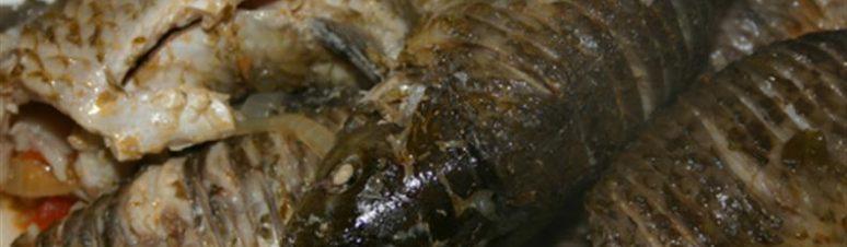 29 - peixe do rio - açorda tipica
