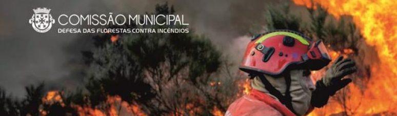 Comissão Incêndios (1)