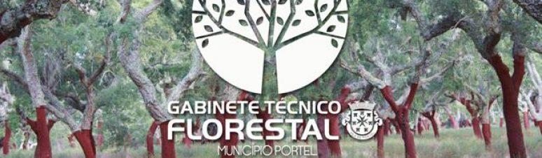 montagem-gabinete-tecnico-florestal1