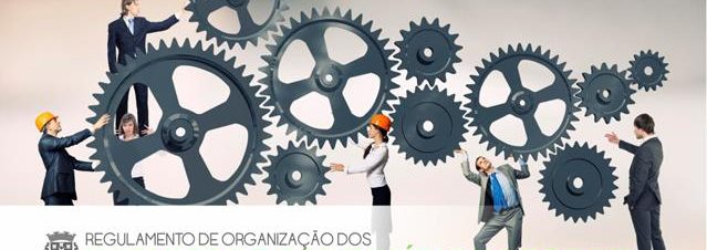 montagem-regulamento-organizacao-serviços
