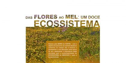 Passeio: das Flores ao Mel: Um Doce Ecossistema